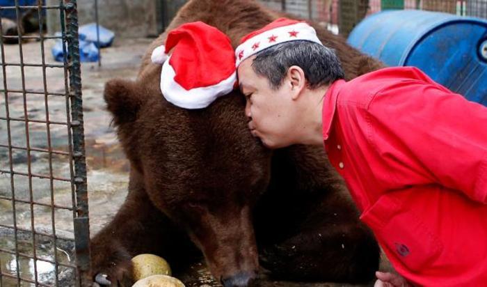 Владелец зоопарка Мэнни Тангко целует медведя гризли во время рождественской вечеринки для зверей в Malabon Zoo в Маниле, Филиппины 18 декабря 2014.