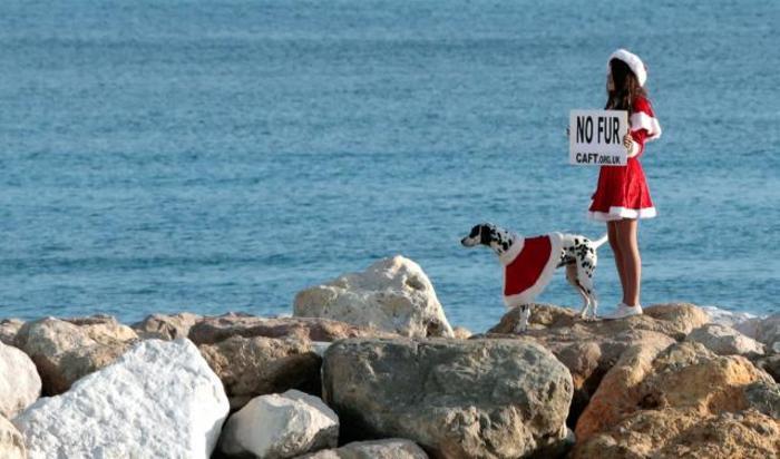 Активистка Коалиции за запрет торговли мехом на пляже в Ницце, Франция.