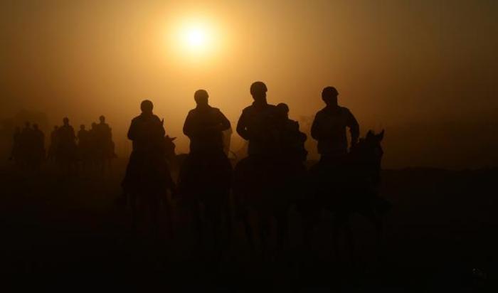 Наездники на 120 километре состязания на выносливость. Дубай, ОАЭ.