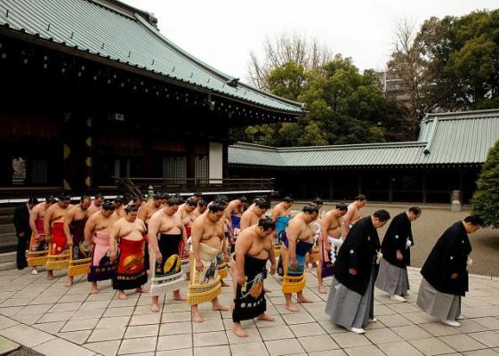 Профессиональные сумоисты померились силами