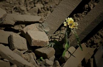Крупнейшее землетрясение в Непале. Российские туристы спасаются в палатках