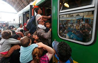 Механизм справедливого распределения. Европа готовится делить мигрантов