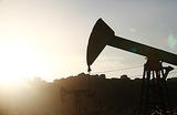 Падающая нефть. Где болевой порог для добычи в России
