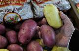 Война с ГМО. Запрет на использование в сельском хозяйстве прошел первое чтение