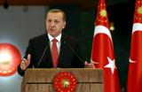 Эрдоган: ВВС Турции не знали, что атаковали российский самолет